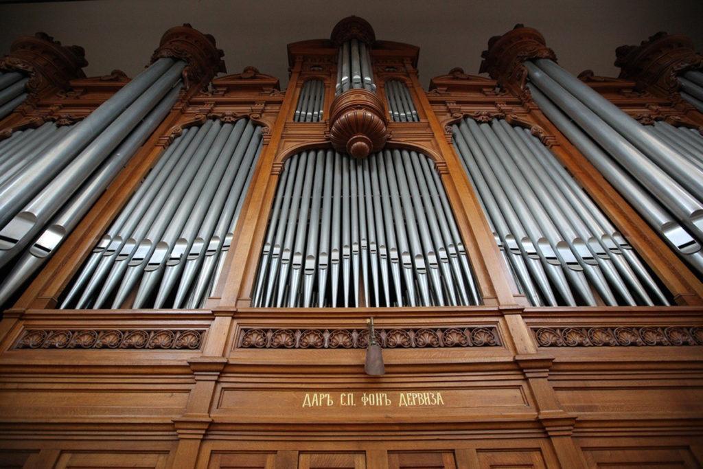 День и год органа